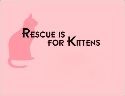 rescue_cover